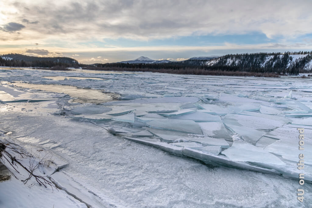 Yukon mit Eisschollen - Millennium Trail Whitehorse