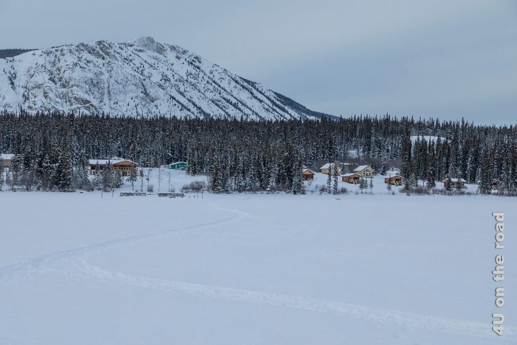 Rückweg über den Tagish Lake mit Blick auf das Southern Lake Ressort. Die Hütten in der oberen Reihe mit den grossen Fensterfronten sind die Deluxe Aurora View Villas