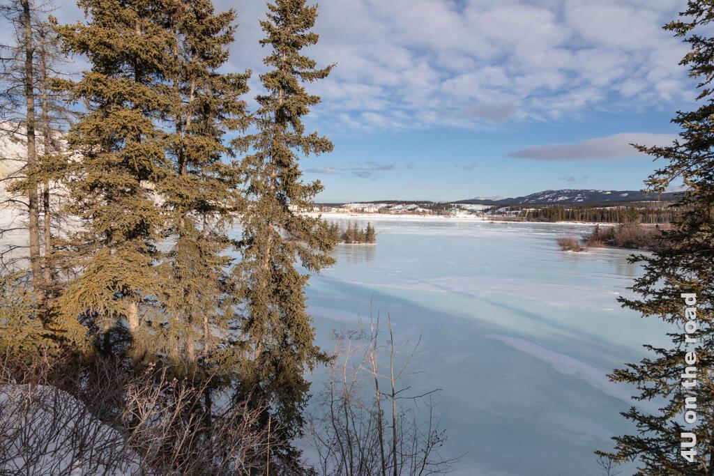 Wasser und Eis und die sich spiegelnden Farben des Himmels verwandeln die Landschaft in eine Zauberwelt - Millennium Trail Whitehorse