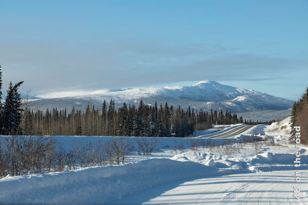 Auf einer Seitenstrasse neben dem Alaska Highway in Richtung Haines Junction