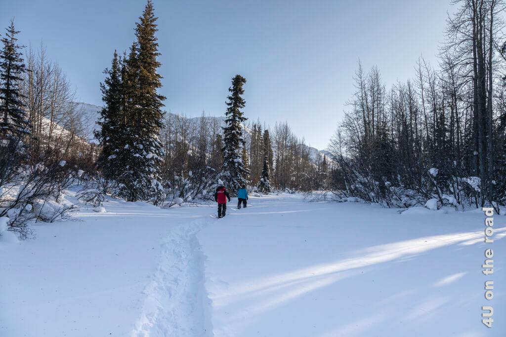 Hier sind wir auf dem North Klondike unterwegs - Tombstone Territorial Park