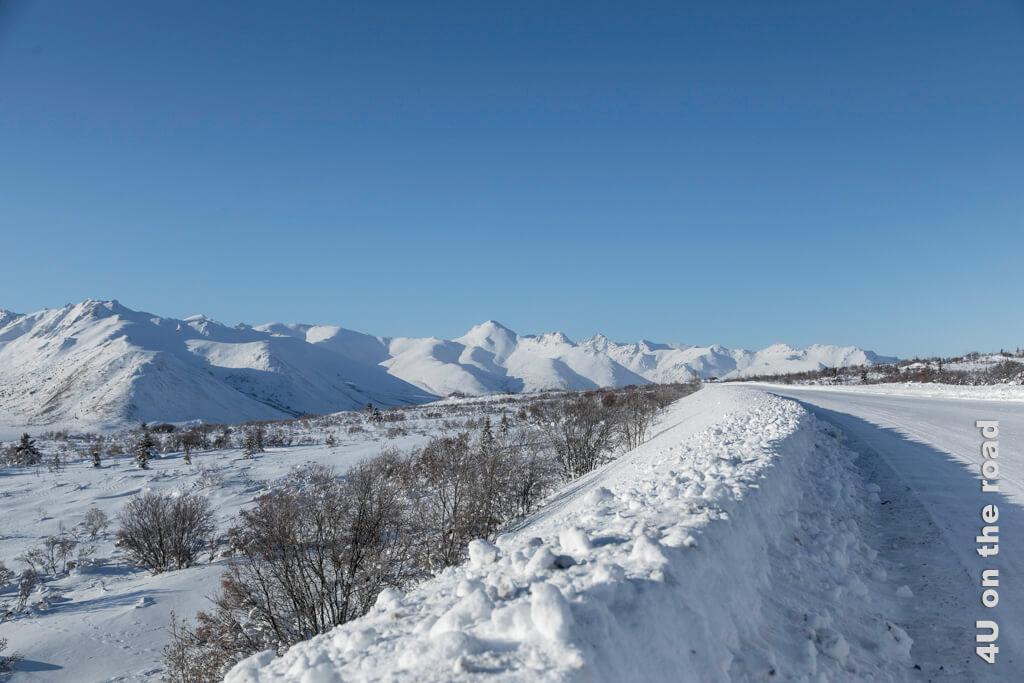 Auf dem Weg zum Two Moose Lake - Der Winter im Tombstone Territorial Park hat einen eigenen Charme.