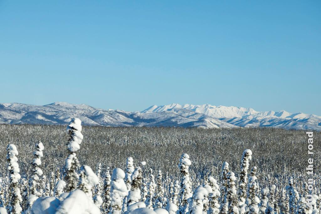 Bergpanorama auf der Strecke von Dawson City nach Whitehorse