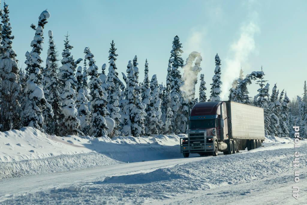 Die schneebeladenen Tannenbäumchen lassen fast Weihnachtsstimmung aufkommen. Auf dem Weg von Dawson City nach Whitehorse.