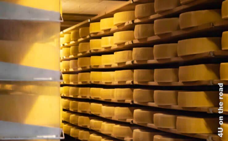 Feature Schaukäserei La Maison du Gruyère