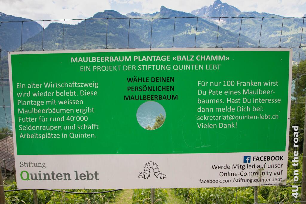 """Unter dem Motto """"Quinten lebt"""" bemüht sich eine Stiftung um Arbeitsplätze und den Zuzug von Familien nach Quinten"""