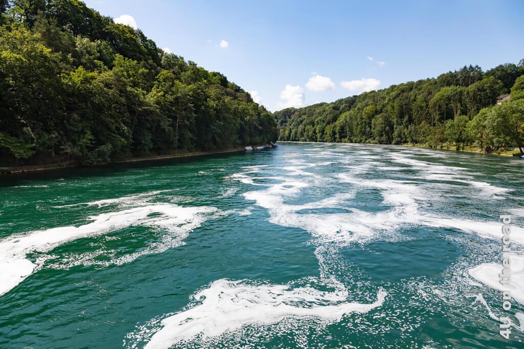 Die Schaummuster auf dem Rhein entstehen aus der Verbindung von Sauerstoff und Pollen