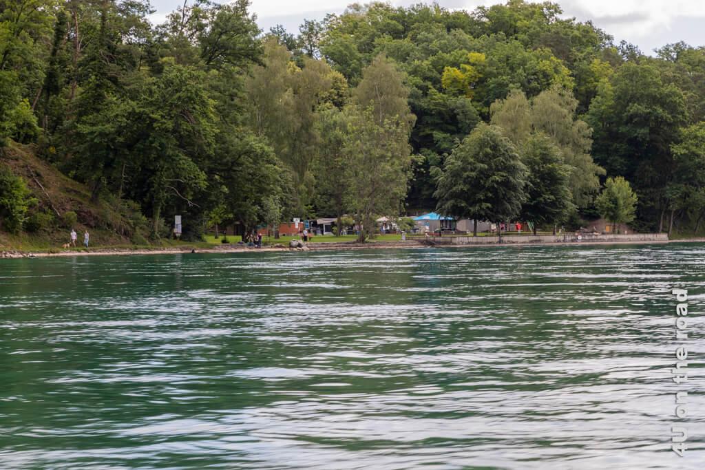 Das Frei- und Rheinbad Bachdelle vom Rhein aus gesehen. Der Rhein ist noch zu kalt zum Schwimmen.