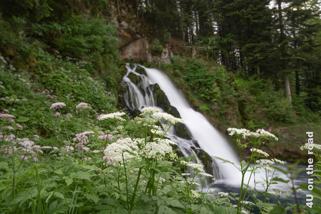 Der Wasserfall in Jaun ist von jeder Seite eine Augenweide