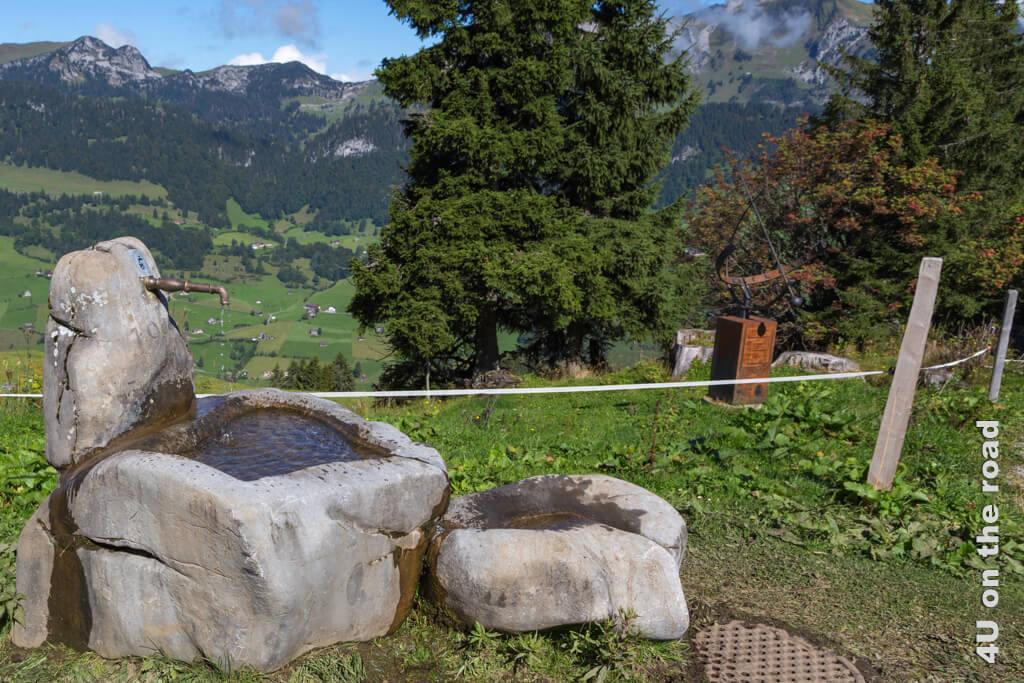 Stillleben auf der Alp