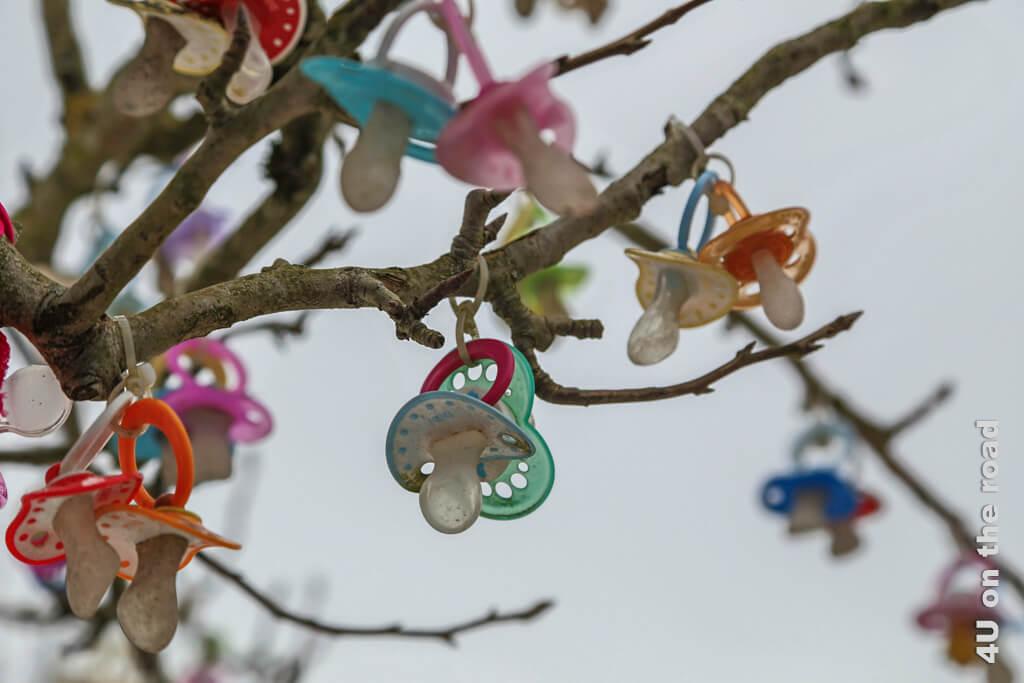 Irgendwann kommt die Zeit, wo man sich als Kind von seinem Nuggy trennen muss. Eine Möglichkeit ist es, sie dem Nuggy Baum im Zoolino zu übergeben.