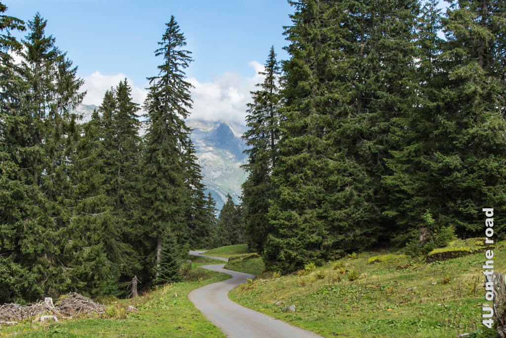 Im Zickzack zurück zur Seilbahn - Toggenburger Sagenweg