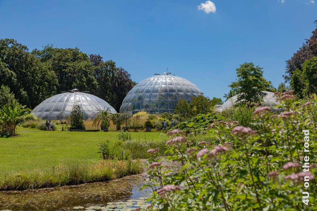 Tropenhäuser im Botanischen Garten Zürich