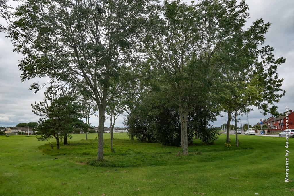 Hier gibt es wirklich viele Grünflächen, die für Sport genutzt werden. Auf dem Weg zur Schnitzeljagd.