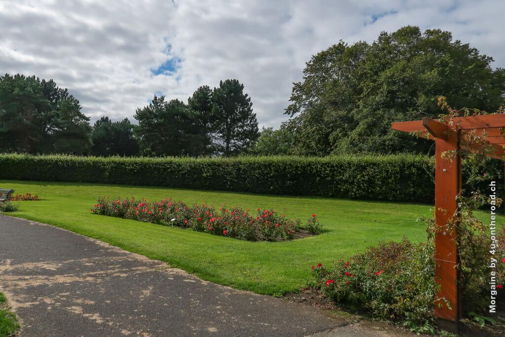 Parkbänke laden im Rosengarten zum Verweilen ein - Schnitzeljagd im St. Anne's Park