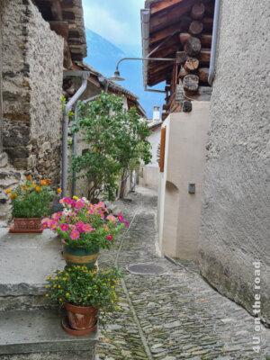 Farbenfrohe Blumen schmücken diese Gasse in Soglio