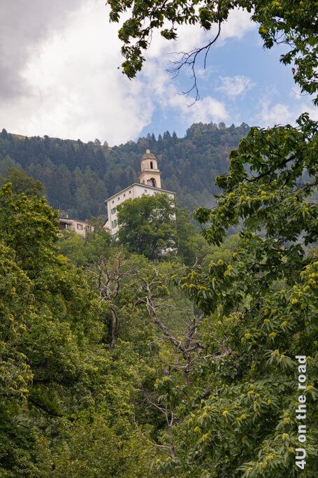 Soglio kann man nur erahnen, weil sich der Kirchturm vorwitzig über die Kastanien erhebt.
