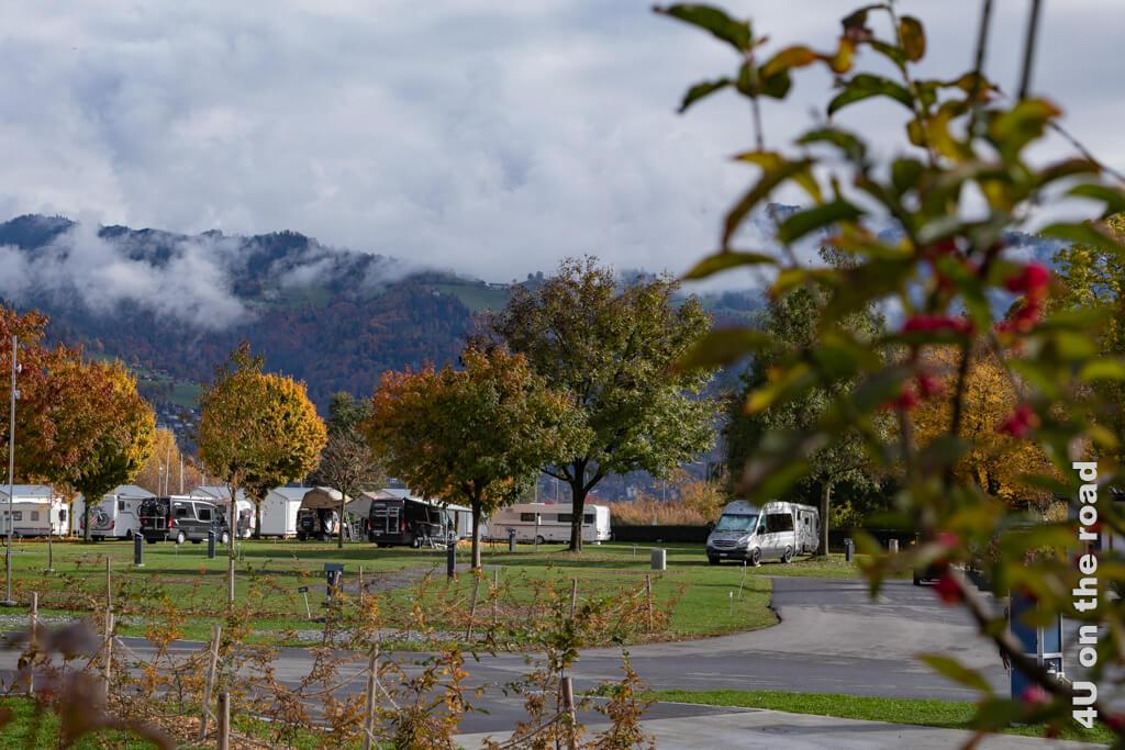 Am nächsten Morgen sieht die Welt schon besser aus. - Erste Campingerfahrungen mit dem eigenen Wohnmobil