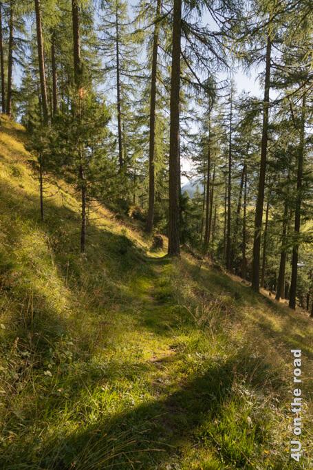 Der Weg ist wunderschön - Wanderung vom Muottas Muragl über die Fuorcla Val Champagna