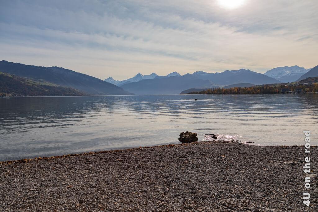 Durch ein kleines Gartentor gelangt man vom Campingplatz Gwatt an das Seeufer des Thuner Sees und kann den Blick in die Berge geniessen. Ein Taucher ist mit einem Metalldetektor im Wasser unterwegs.- Erste Campingerfahrungen mit dem eigenen Wohnmobil
