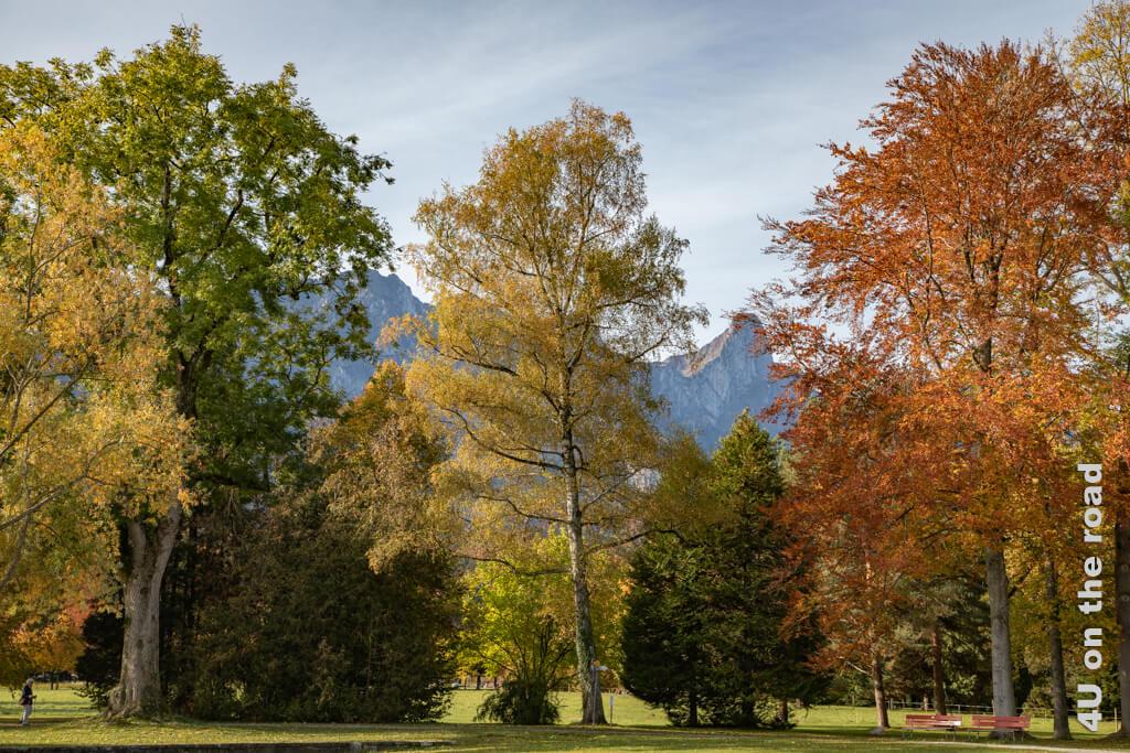Das perfekte Herbstwetter haben wir am Abreisetag. So sieht die Welt nur fünf Schritte vom Campingplatz Gwatt entfernt aus. - Erste Campingerfahrungen mit dem Wohnmobil