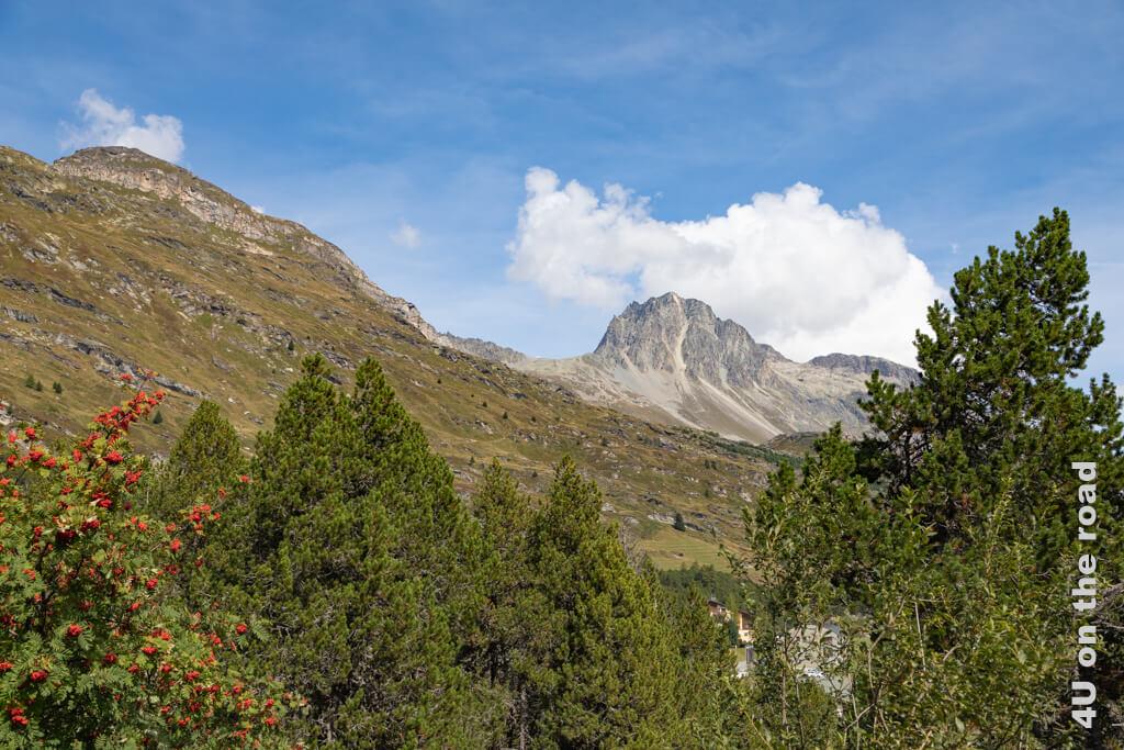 Ausblick auf die Berge - Sentiero Segantini