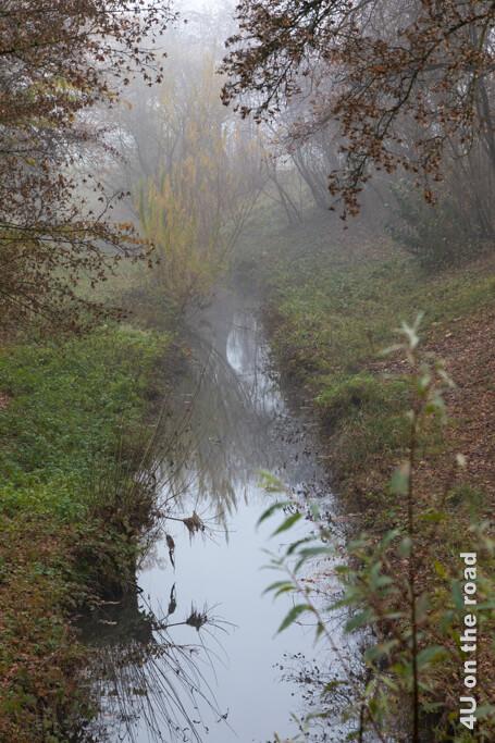 Wir taufen den Bach auf den Namen Beaver Creek wegen der Staudämme der Biber. - Flughafenrundweg