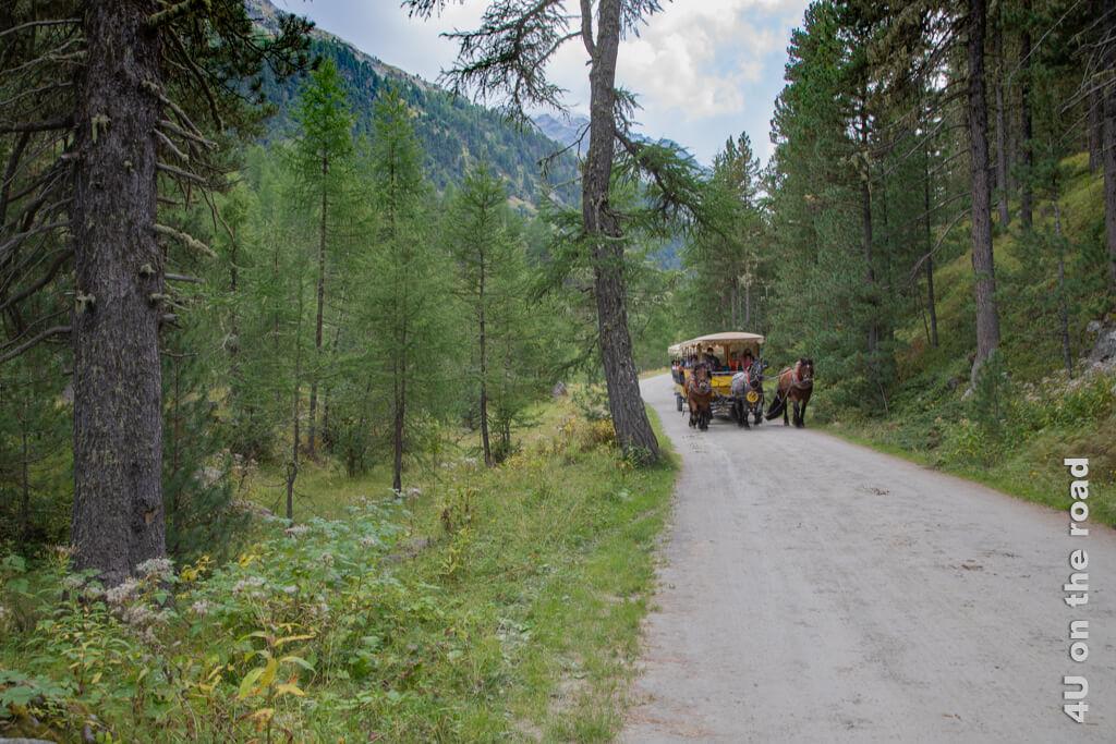 Der Pferdeomnibus ist so schnell unterwegs, dass ich mich mit einem Sprung neben dem Weg in Sicherheit bringen muss, so dass mir kein besseres Bild gelingt. - Wandern im Val Roseg