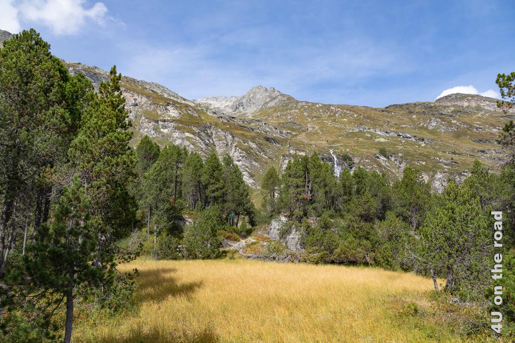Wer genau schaut, sieht auch den Wasserfall, dessen Rauschen uns begleitet. - Spurensuche Giovanni Segantini
