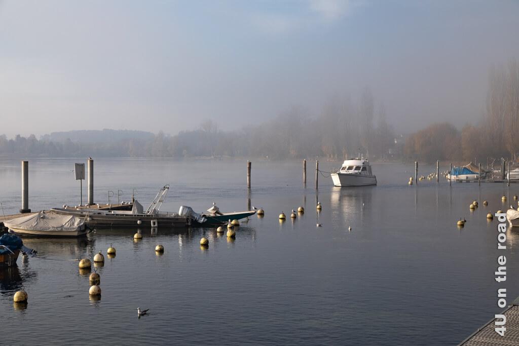 Kaum durchdringen die ersten Sonnenstrahlen den Nebel füllen sich die Gassen von Stein am Rhein