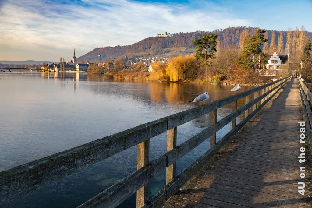 Blick vom Steg auf die Werd Insel auf die Altstadt von Stein am Rhein. Oben auf dem Berg thront die Burg Hohenklingen, die ein Restaurant beherbergt.