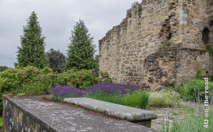 Feature Falkland Palace