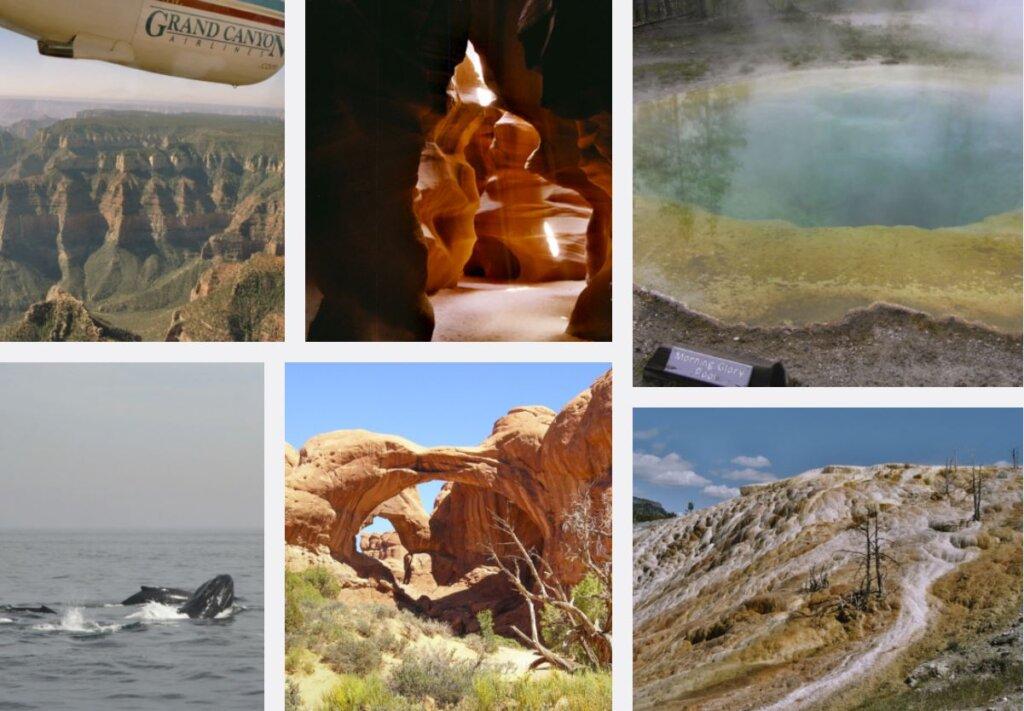 Der Yellowstone NP gehört ganz sicher zu den Orten, die wir noch einmal mit viel Zeit sehen wollen. - Reise Bucket List USA