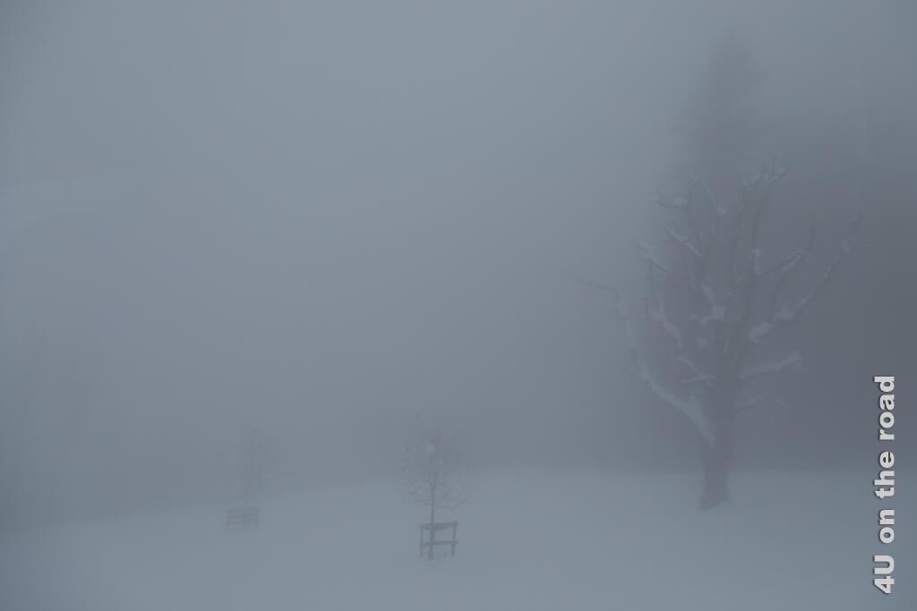 Bleischwer legt sich der Nebel auf die Landschaft