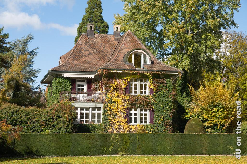Dieses Haus auf der Spitze der Aareinsel hat sich perfekt in die Natur integriert. Es regt unsere Fantasie an. - Thun