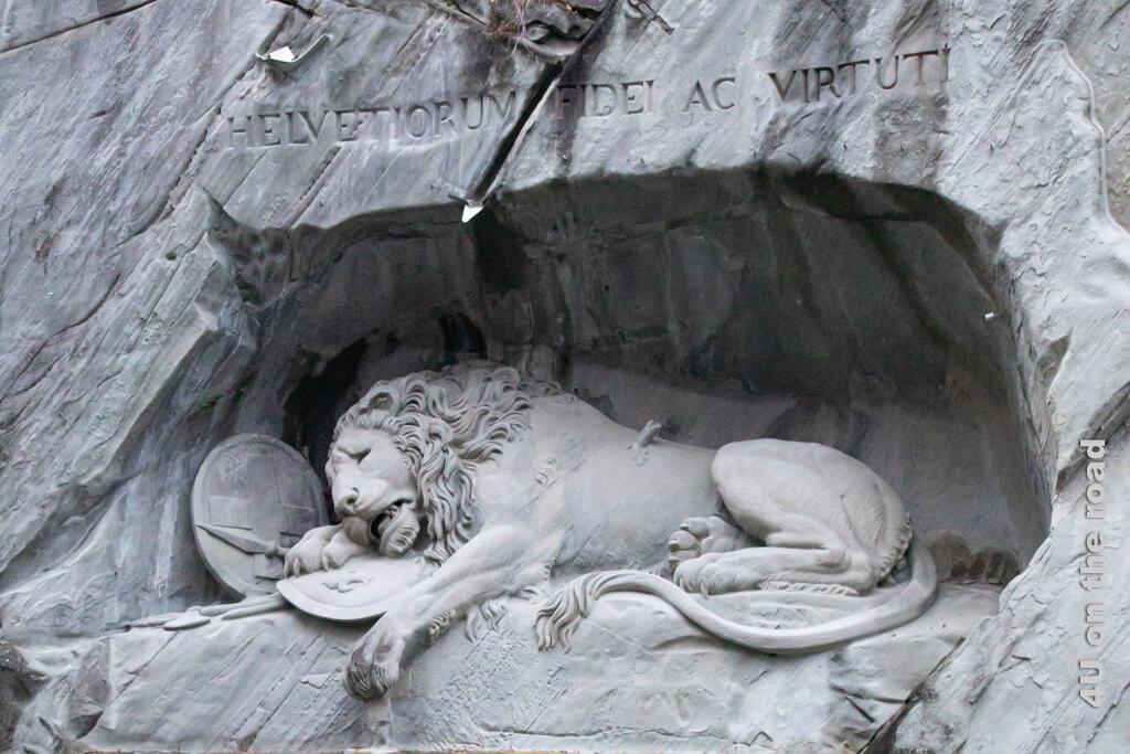 Der Schmerz dieser Welt im Gesicht des Löwen