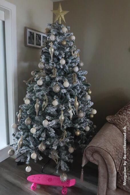 Der Weihnachtsbaum meiner Gastfamilie - Weihnachten in Irland