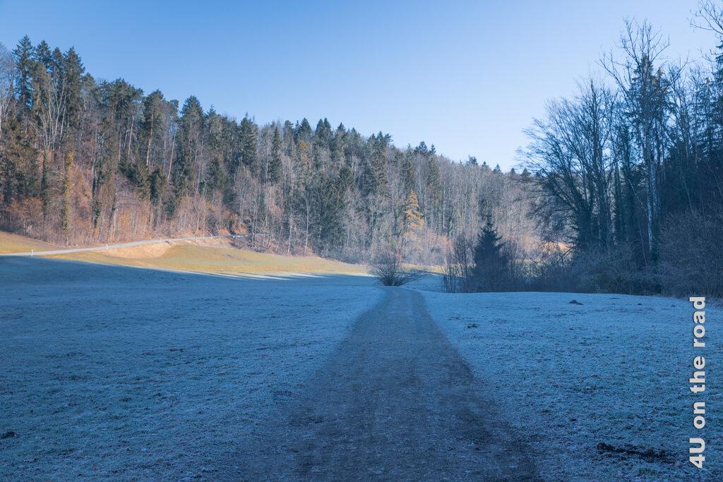Im Schatten des Bäntals ist noch alles gefroren. Auf dem Weg zur Tüfels Chilen