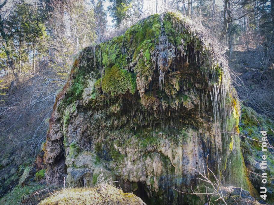 Der imposante Tuffsteinkegel der Tüffels Chilen. Man sieht wie das Wasser aus dem Moos herausfliesst. (Drohnenaufnahme)