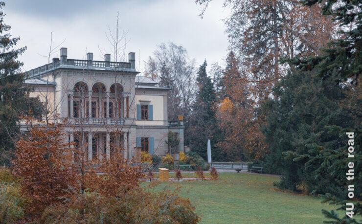 Feature Rietberg Museum