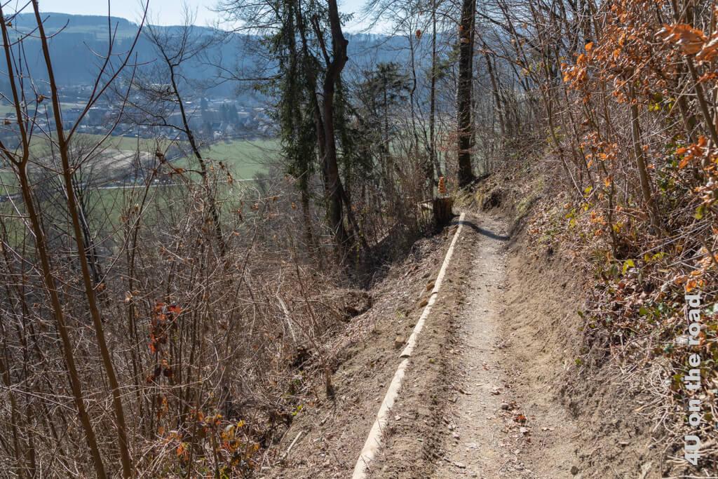 Auf dem Paul Burkhard-Weg gibt es viele Holzskulpturen zu entdecken.  - Von der Tüfels Chilen nach Zell