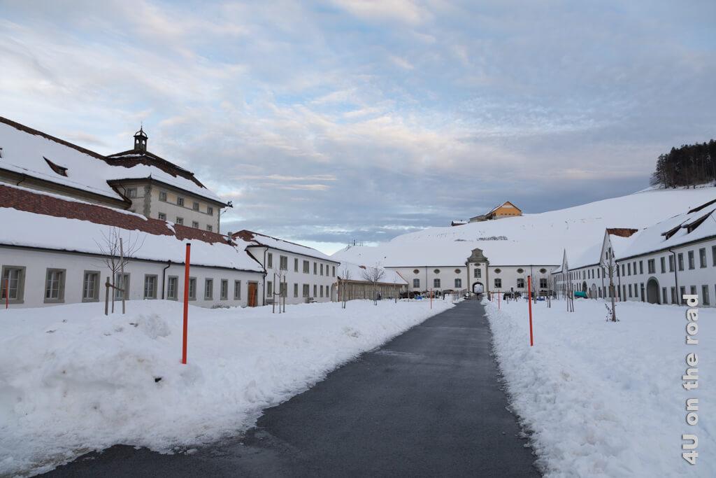 Die letzten Pferde stehen noch mit Mäntelchen im Schnee und warten darauf, zurück in den Stall gebracht zu werden.