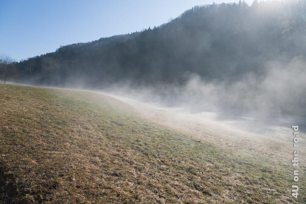 Hier erkennt man genau die Grenze zwischen gefrorenem Boden und bereits aufgetautem Boden.