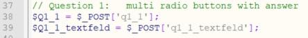 Antwort Variablen für multi radio button mit Freitextfeld - Umfrageseite selbst bauen in WordPress