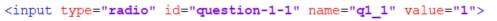 Definition eines input Elements mit Namen q1_1 - Umfrageseite selbst bauen in WordPress