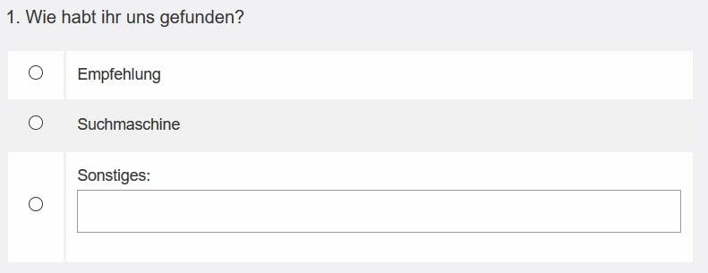 Single Choice Frage mit Freitext Option wie sie auf der Website dargestellt wird