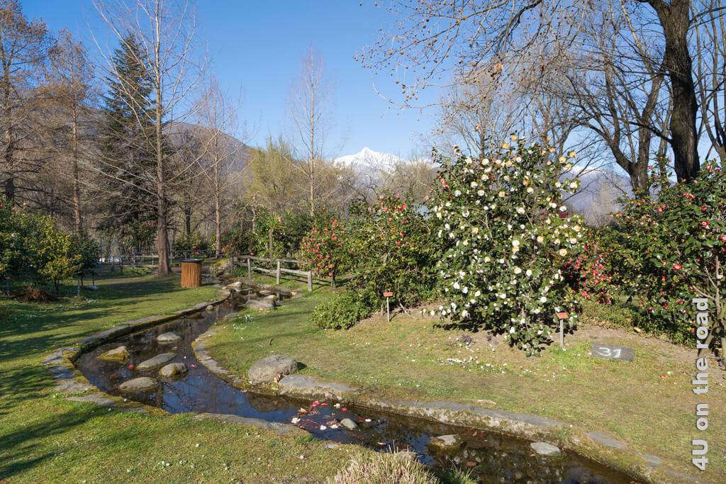 Der Wasserlauf führt zu einem künstlichen See vor dem Pavillion - Kamelienpark Locarno