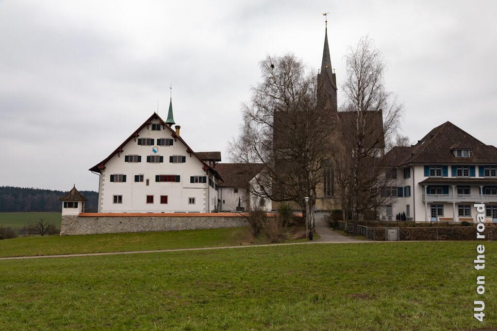 Der von Bäumen gesäumte Weg, der den Blick auf die Kirche zuführt und verhindert. Rechts das Haus am See - Kloster Kappel