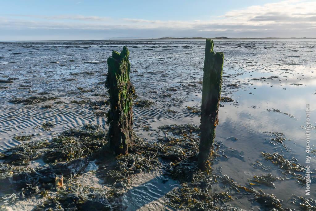 Mit Wasser würde die Weite noch besser zur Geltung kommen. Portmarnock