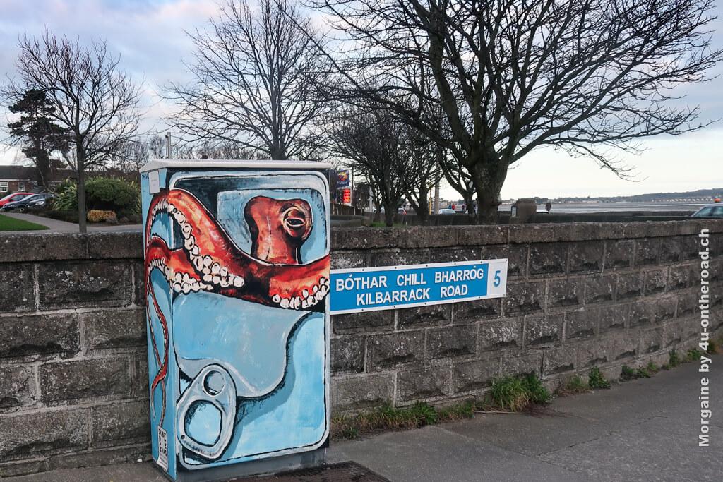 """Ich habe einen Octopus gefunden! Na gut, nur ein Bild davon, aber immerhin. Foto Challenge """"Meer"""""""
